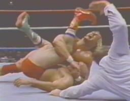 Hogan Pins The Iron Shiek For His First Title